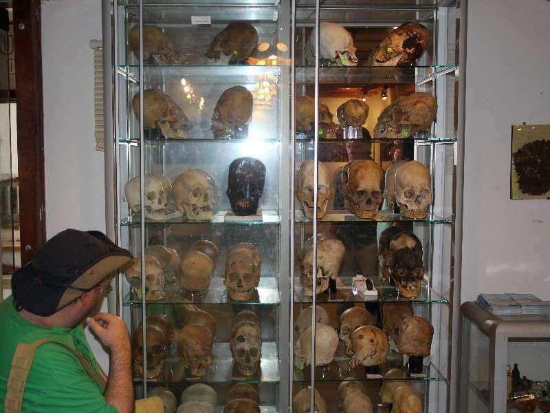 Judd with Paracas Skulls